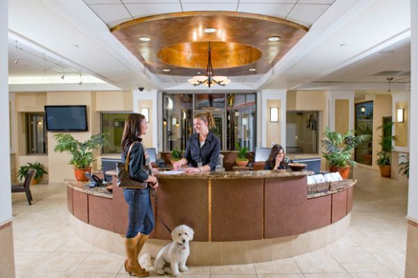 Hoteles con mascota